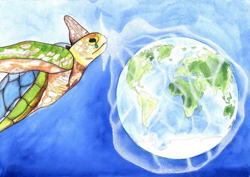 A Turtle's Tear: Our Plastic Oceans by Barnaby Blampied (9)
